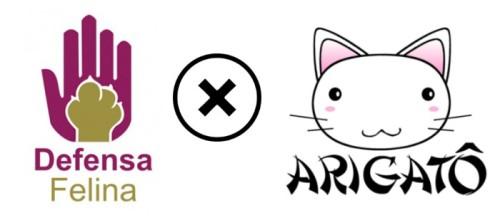 Defensa Felina X Arigato
